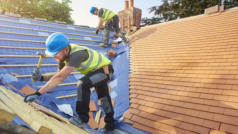 Check with a Construction Structure Agency to Choose the Correct Roof